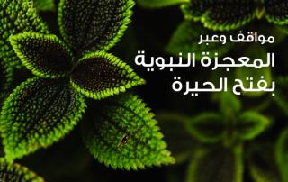 مواقف وعبر (24)-المعجزة النبوية بفتح الحيرة!!