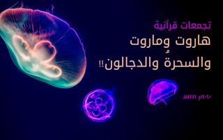 تجمعات قرآنية٢19
