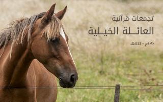تجمعات قرآنية٢22
