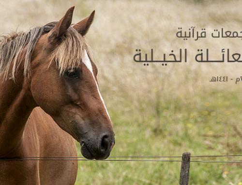 تجمعات قرآنية (28) العائلة الخيلية!!